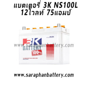 3kNS100L